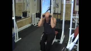 Cable Seated Crunch