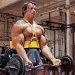 arnold-300x269