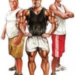 Vücut Tipine Göre Çalışma ve Beslenme