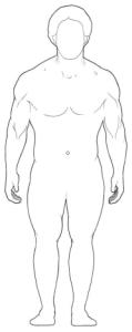 endomorfik