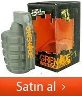 grenade detonator