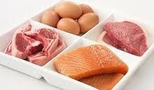yüksek protein