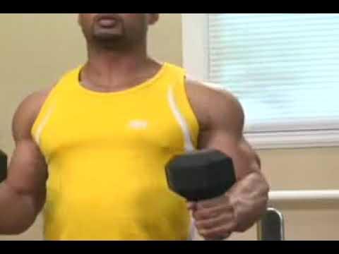 Pazu Demirci Kaldırışı Biceps Hammer Curls