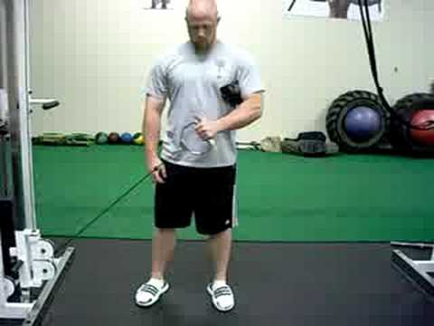 30 Deg Low Pulley External Rotation (www.trainatp.com)
